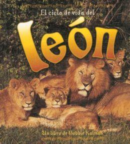 El ciclo de vida del león