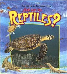 Que Son Los Reptiles? (What Are Reptiles?)