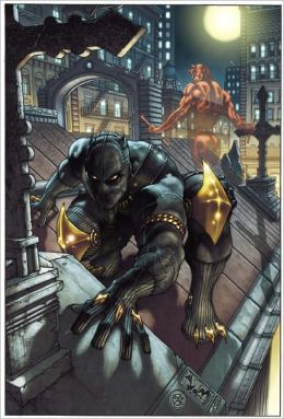 Black Panther: The Man Without Fear Volume 1: Urban Jungle