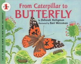 From Caterpillar To Butterfly (Turtleback School & Library Binding Edition)