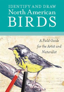 Identify and Draw North American Birds: A Field Guide for the Artist and Naturalist