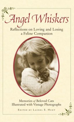 Angel Whiskers: Reflections On Loving and Losing a Feline Companion