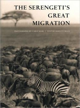The Serengeti's Great Migration