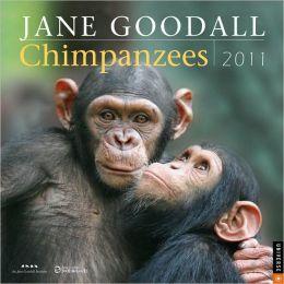 2011 Chimpanzees Wall Calendar