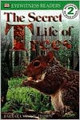 The Secret Life of Trees (DK Readers Level 2 Series)