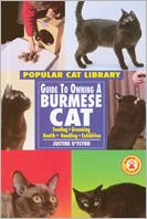 Guide to Owning a Burmese Cat