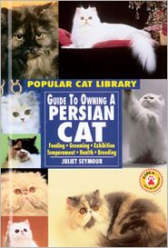 Guide to Owning a Persian Cat