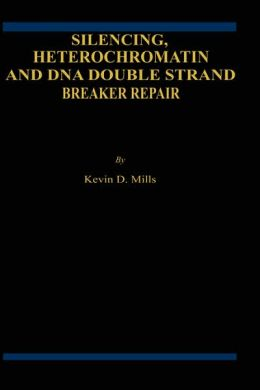 Silencing, Heterochromatin and DNA Double Strand Break Repair