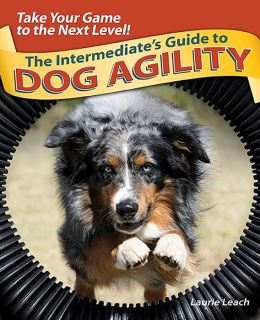 The Intermediate's Guide to Dog Agility