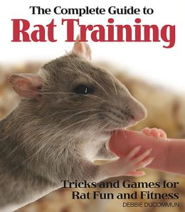 Complete Guide to Rat Training