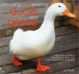 Choosing and Keeping Ducks and Geese: A Beginners Guide to Identification, Care, and Husbandry of Over 35 Species