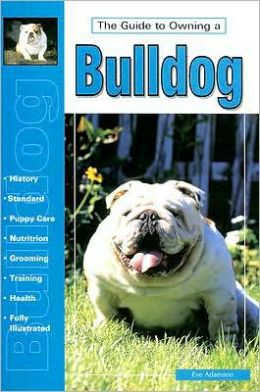 The Guide to Owning a Bulldog