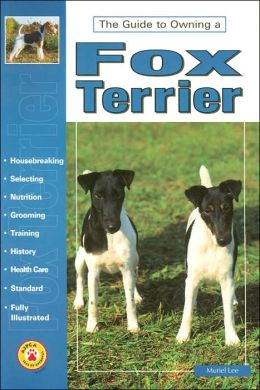 The Guide to Owning a Fox Terrier