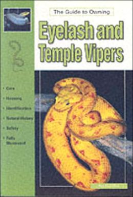The Guide to Owning Eyelash and Temple Vipers