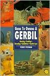 Guide to Owning a Gerbil