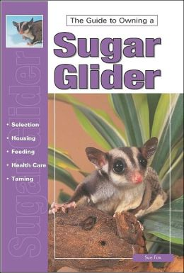 The Guide to Owning a Sugar Glider: A Complete Guide to Caring for Your Sugar Glider