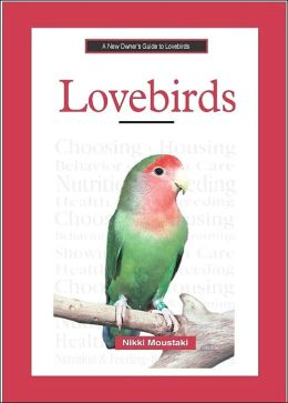 New Owner's Guide to Lovebirds