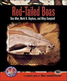 Red-Tailed Boas: A Complete Guide to Boa Constrictor