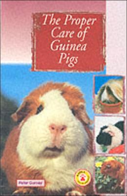 Proper Care of Guinea Pigs