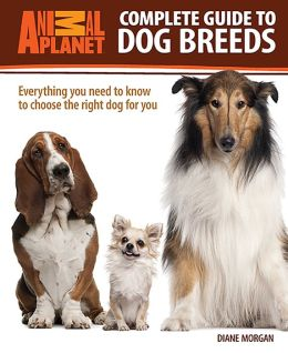 Complete Guide to Dog Breeds: Everything You Need to Know to Choose the Right Dog for You