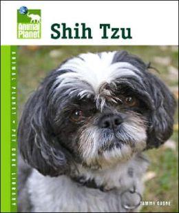Shih Tzu