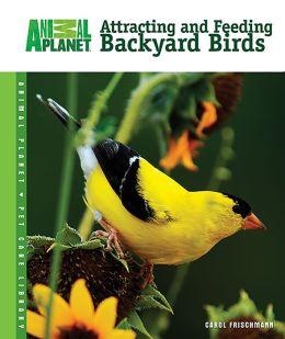 Attracting and Feeding Backyard Birds