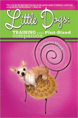 Little Dogs Training Your Pint Size Companion