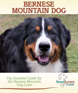 Bernese Mountain Dog: The Essential Guide for the Bernese Mountain Dog Lover