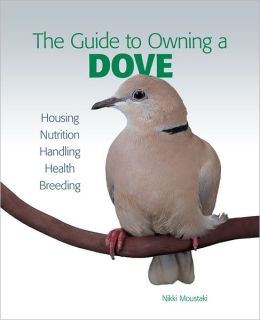 Guide to Owning a Dove