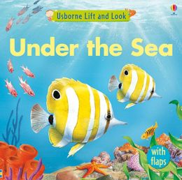 Under the Sea Lift and Look