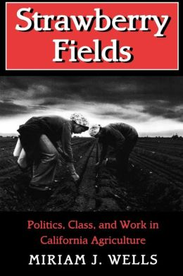 Strawberry Fields: Politics, Class and Work in California Agriculture