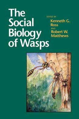 The Social Biology of Wasps