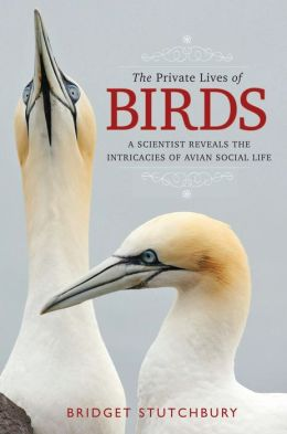 The Private Lives of Birds: A Scientist Reveals the Intricacies of Avian Social Life