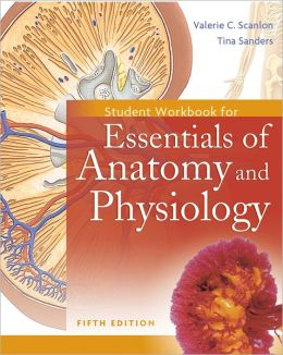 Students Workbook for Essentials of Anatomy and Physiology