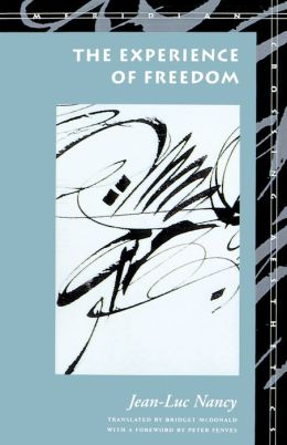 The Experience of Freedom (Meridian: Crossing Aesthetics Series)