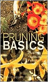 Pruning Basics: Tools, Techniques, Timing