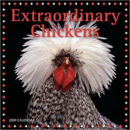 2009 Extraordinary Chickens Wall Calendar