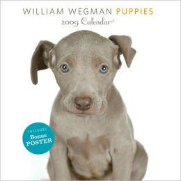 2009 William Wegman Puppies w/ Poster Wall Calendar