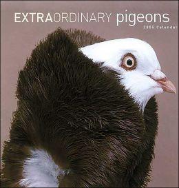 2005 Extraordinary Pigeons Wall Calendar