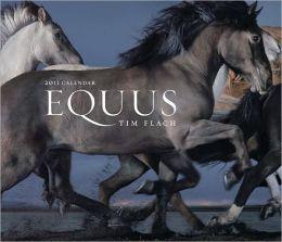 2011 Equus Wall Calendar