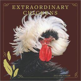 Extraordinary Chickens 2011 Wall Calendar