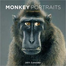 2011 Monkey Portraits Wall Calendar