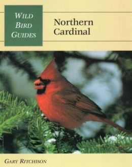 Wild Bird Guides: Northern Cardinal
