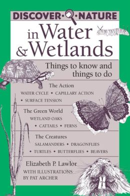 Discover Nature in Water & Wetlands: Things to Know and Things to Do