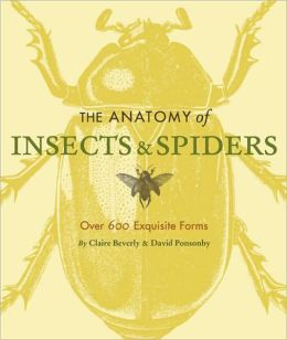 The Anatomy of Insects and Spiders: Over 600 Exquisite Forms