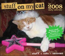 2008 Daily Calendar: Stuff on My Cat