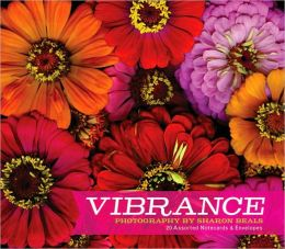 Vibrance Deluxe Notecards