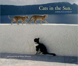 Cats in the Sun 2009 Wall Calendar