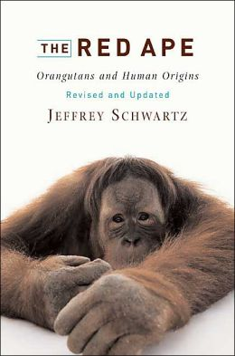 The Red Ape: Orangutans and Human Origins