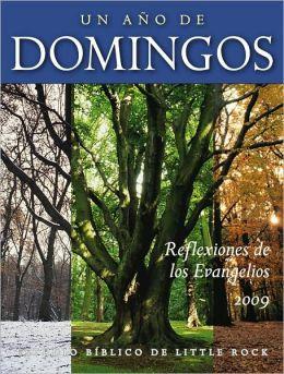 Un año de domingos: Reflexiones de los Evangelios 2009